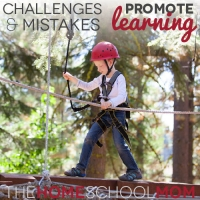TheHomeSchoolMom Blog: How challenges & mistakes promote learning