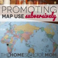 Promoting Map Use Subversively